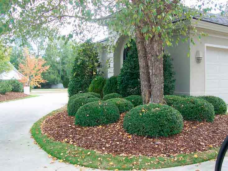Garden Designs By Tom Moss Landscape Architect Nc Va